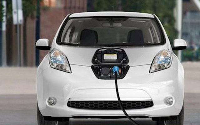 Ô tô điện lắp ráp trong nước sẽ được ưu đãi thuế nhập khẩu linh kiện - 1