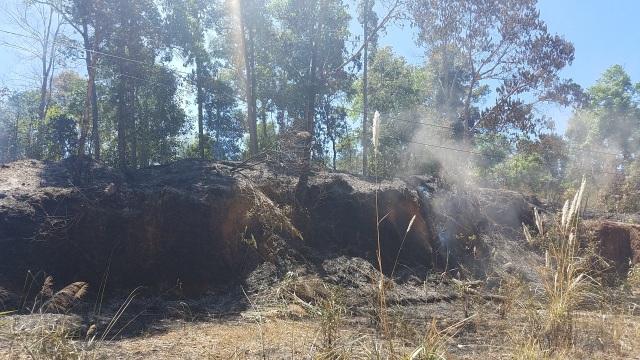 Cháy rừng lớn, huy động hàng trăm người dân cùng dập lửa cứu rừng - 3