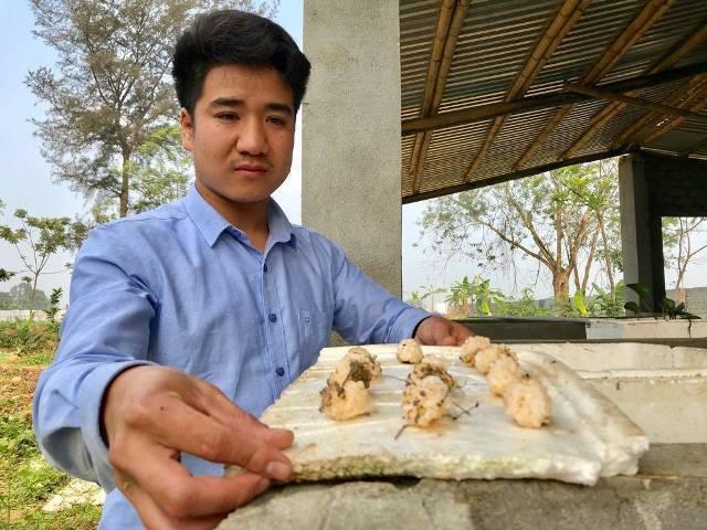 9X nuôi con siêu đẻ chỉ ăn bèo, lá cây mà kiếm 300 triệu/năm - 6