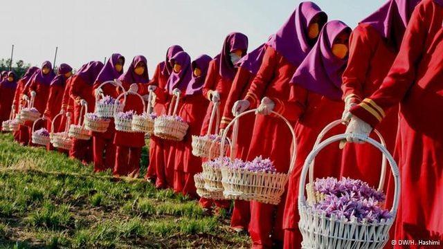 """Saffron Nhụy hoa nghệ tây - Thứ gia vị được ví như """"vàng đỏ"""" - 2"""
