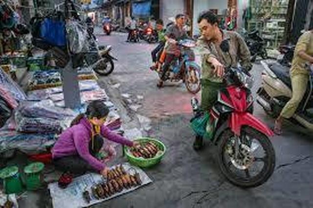 Thịt chuột của Việt Nam: Thơm ngon như phô mai que - 2