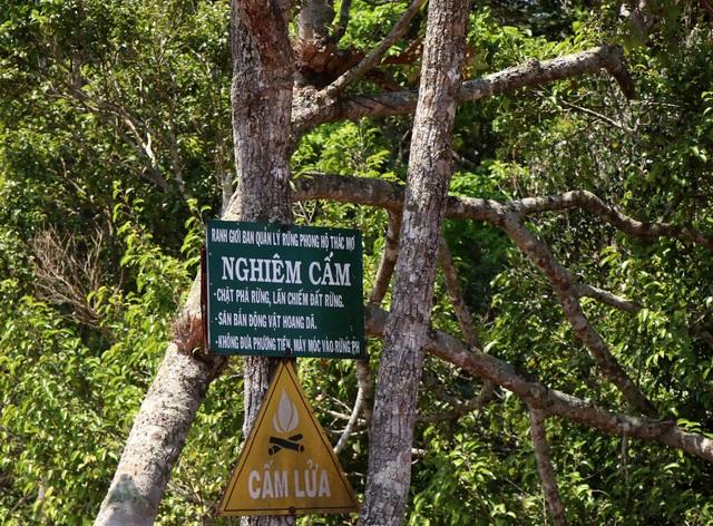 Bất ngờ bị cắt giảm diện tích giao rừng, nồi cơm của người dân cũng bị thu hẹp lại! - 1