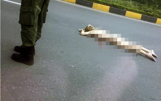 Cô gái ngoại quốc lõa thể, rơi từ cầu vượt gần sân bay Nội Bài xuống đường - 3