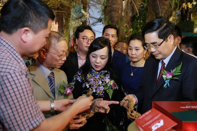 Sâm Quốc bảo hàng trăm triệu đồng và hàng loạt dược liệu quý được trưng bày ngay tại Hà Nội.jpg