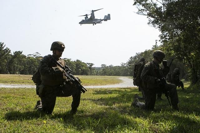 Mỹ tập trận chiếm đảo đề phòng Trung Quốc cứng rắn trên Biển Đông - 1