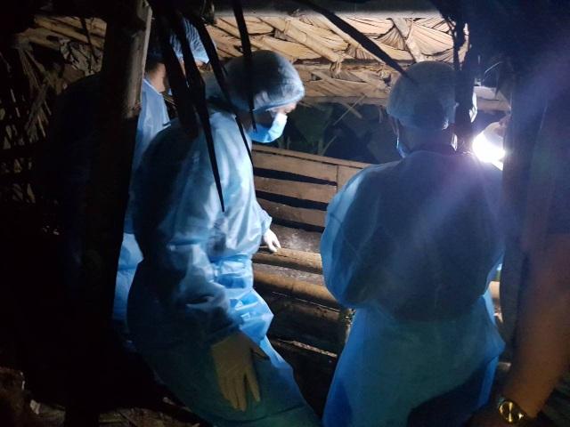 Thanh Hóa: Thêm hai huyện xuất hiện dịch tả lợn châu Phi - 1