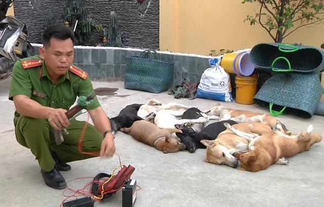 Tang vật gồm súng bắn điện và xác chó bị công an thu giữ.