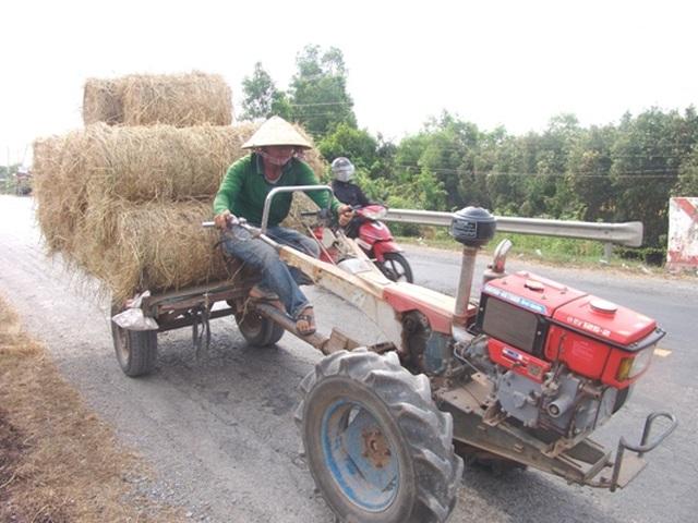 """Rơm """"đắt xắt ra miếng"""", nông dân thu tiền triệu mỗi ngày - 2"""