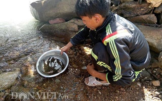 Tứ độc đặc sản cá cực hiếm ở miền núi, có tiền cũng khó mua - 18