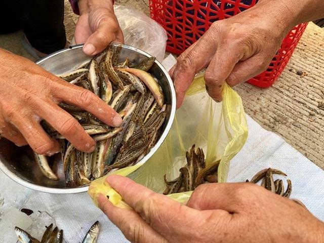 Tứ độc đặc sản cá cực hiếm ở miền núi, có tiền cũng khó mua - 9