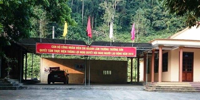 Phát hiện thêm một vụ phá rừng nghiêm trọng tại Quảng Bình - 2
