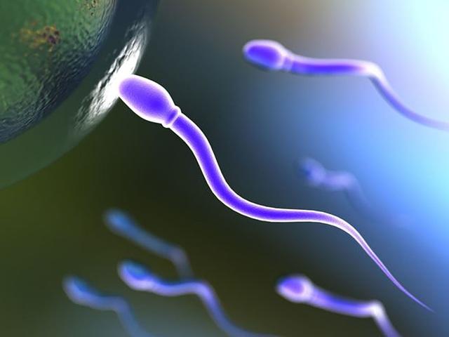 Thuốc tránh thai cho nam giới sẽ có mặt trên thị trường vào năm 2029 - 1