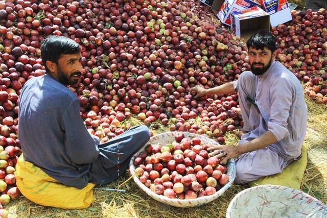 Pakistan - Vùng đất bất an đầy quyến rũ qua bộ ảnh của du khách Việt - 13