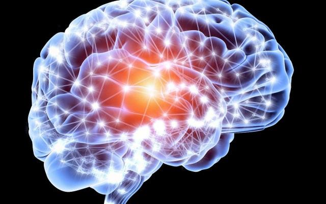 Con người liên tục sản sinh tế bào não suốt cuộc đời - 1