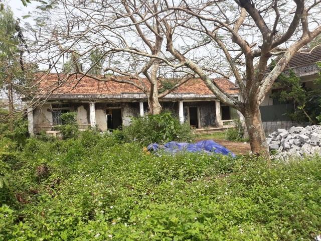Nghệ An: Doanh nghiệp thuê đất rồi bỏ hoang,chính quyền thiếu đất xây phòng học - 1
