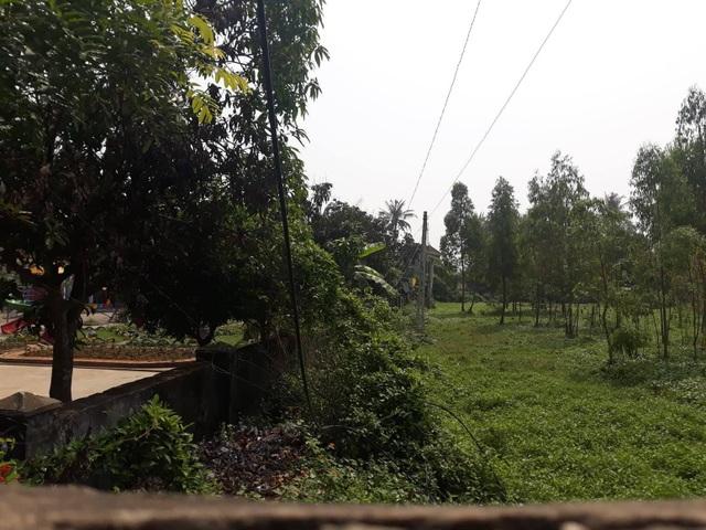 Nghệ An: Doanh nghiệp thuê đất rồi bỏ hoang,chính quyền thiếu đất xây phòng học - 4