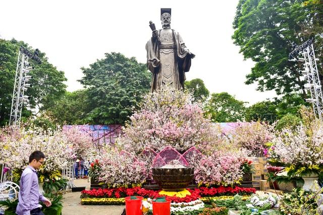 Hoa anh đào Nhật Bản khoe sắc giữa lòng Hà Nội - 1