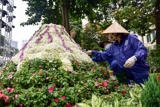 Hoa anh đào Nhật Bản khoe sắc giữa lòng Hà Nội - 12