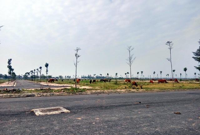 """Hà Nội: Giá đất tại 4 huyện """"nhảy múa"""", có nên tin? - 2"""
