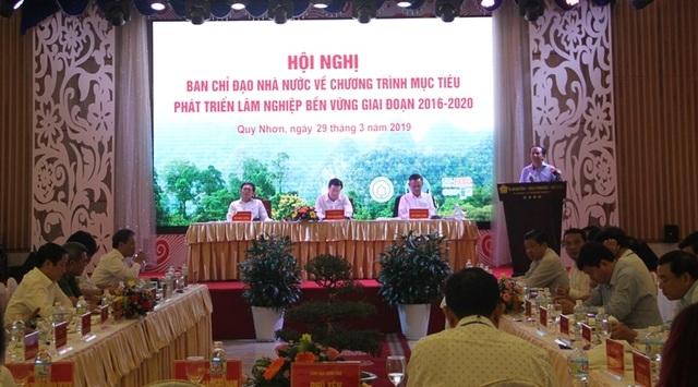 Phó Thủ tướng: Duy trì đóng cửa rừng để giữ rừng - 1