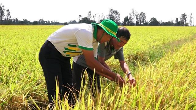 Phân bón Phú Mỹ cùng nhà nông ứng phó thời tiết khắc nghiệt - 1