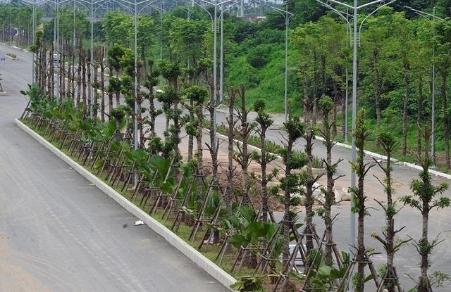 Tuyến đường nghìn tỷ Nguyễn Xiển – Xa La kết nối KĐT Thanh Hà Mường Thanh đã ấn định ngày thông xe kỹ thuật - 6