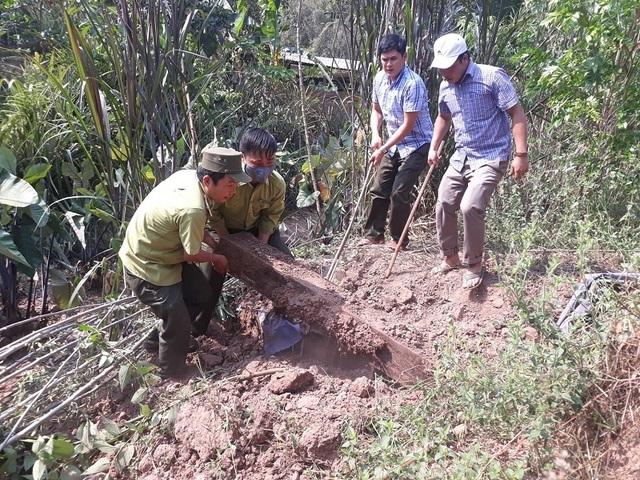 Phát hiện 3 hầm giấu gỗ nghi là tang vật vụ phá rừng ở Phong Nha - Kẻ Bàng - 2