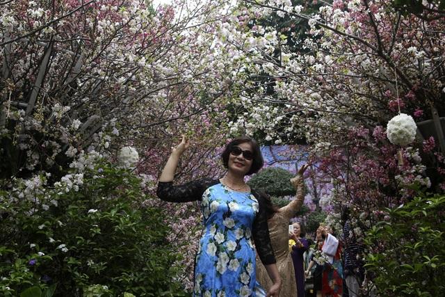 Ngắm hàng vạn cành hoa anh đào khoe sắc bên hồ Gươm - 3