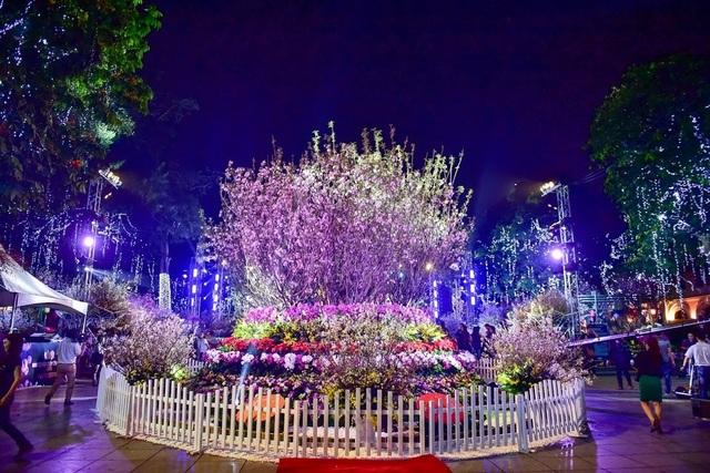 Hàng ngàn cành hoa anh đào khoe sắc bên hồ Hoàn Kiếm - 10