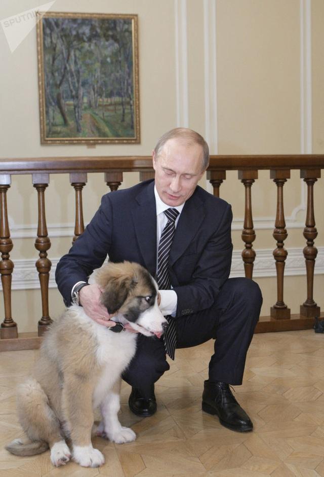 Những món quà bốn chân đặc biệt của Tổng thống Nga Putin  - 5