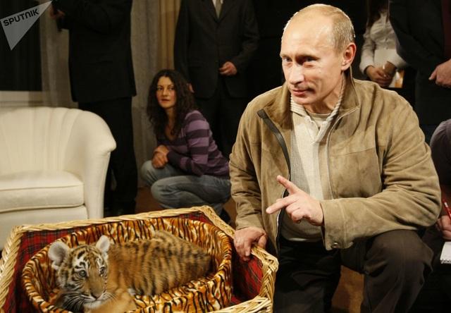 Những món quà bốn chân đặc biệt của Tổng thống Nga Putin  - 4
