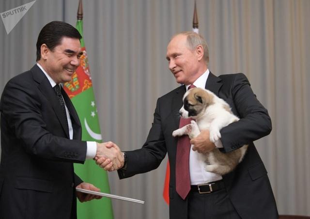 Những món quà bốn chân đặc biệt của Tổng thống Nga Putin  - 7