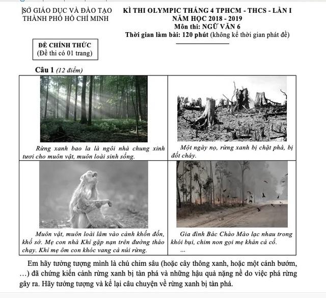Hình ảnh đẹp đẽ và đau thương vào đề Văn của TPHCM - 3