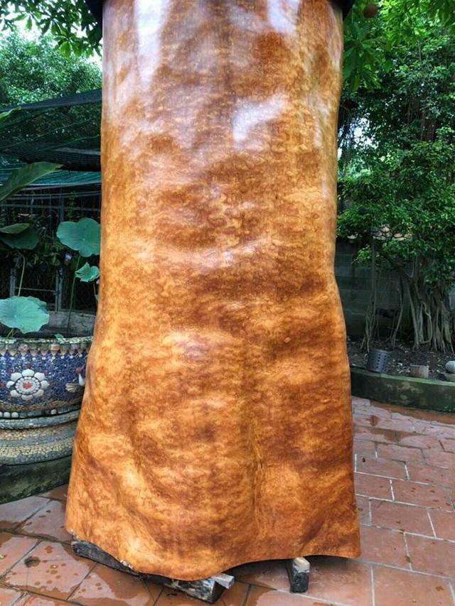 Bí ẩn khúc gỗ dài 3 mét, đại gia Hải Phòng trả giá gần 4 tỷ đồng - 3