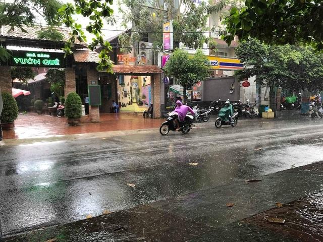 Cơn mưa vàng giải nhiệt cho TPHCM sau đợt nắng nóng gay gắt - 5
