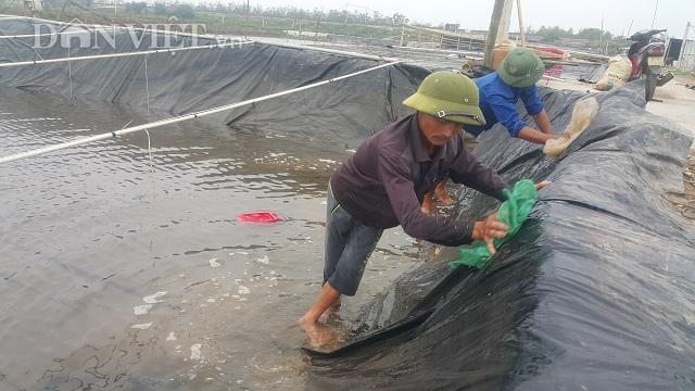 Nghề lạ ở Ninh Bình: Cân cát lấy tiền, cứ 1 kg bán hơn 1 triệu đồng - 2