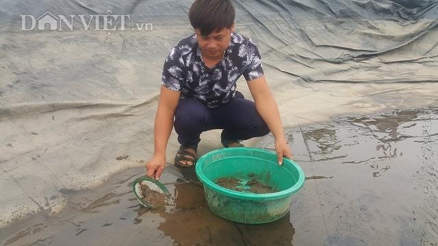 Nghề lạ ở Ninh Bình: Cân cát lấy tiền, cứ 1 kg bán hơn 1 triệu đồng - 3