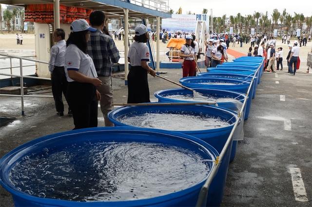 Việt Nam - Trung Quốc cùng thả hơn 5 triệu con giống thủy sản xuống biển - 1