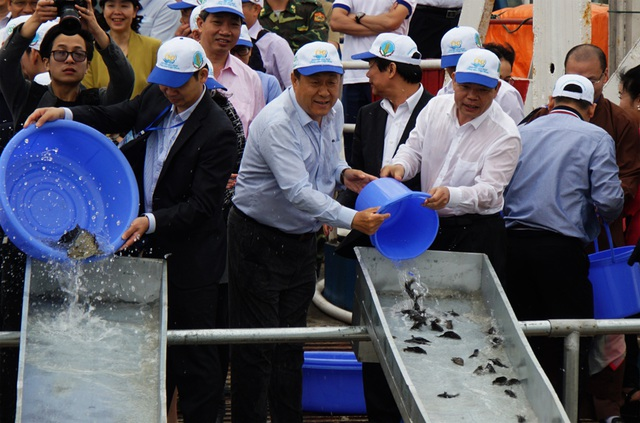 Việt Nam - Trung Quốc cùng thả hơn 5 triệu con giống thủy sản xuống biển - 3