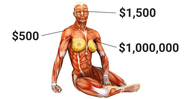 Con người sẽ bất tử nếu có thể thay thế mọi bộ phận cơ thể? - 2