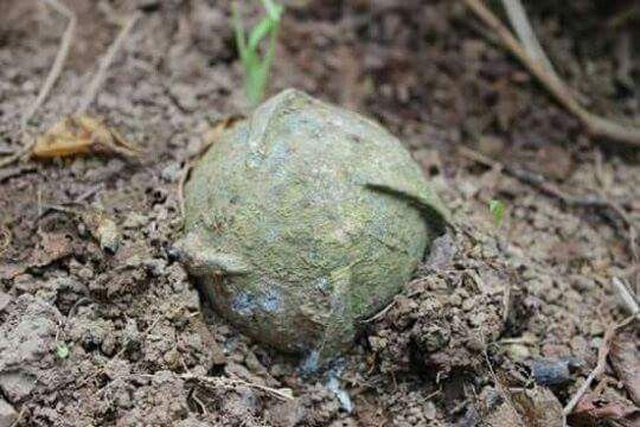 Hơn 800.000 tấn bom, mìn đang nằm dưới lòng đất Việt Nam - 1