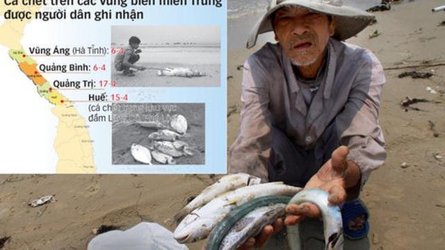 Đa số người dân Việt Nam chọn bảo vệ môi trường, hy sinh tăng trưởng - 1