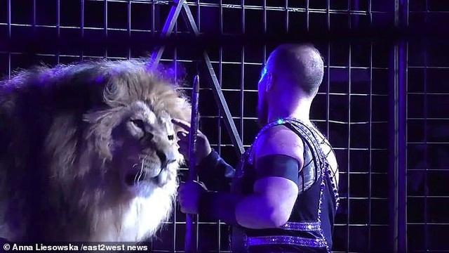 Kinh hoàng khoảnh khắc sư tử lao tới cắn xé huấn luyện viên trước mặt khán giả - 4
