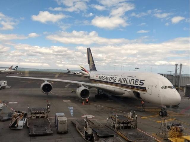 Những hãng hàng không tốt nhất thế giới năm 2019 - 19