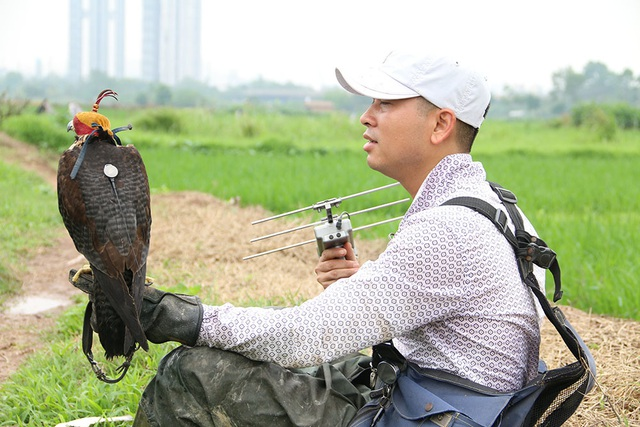 Thú chơi chim ăn thịt đi săn mồi độc đáo ở Hà Nội - 8