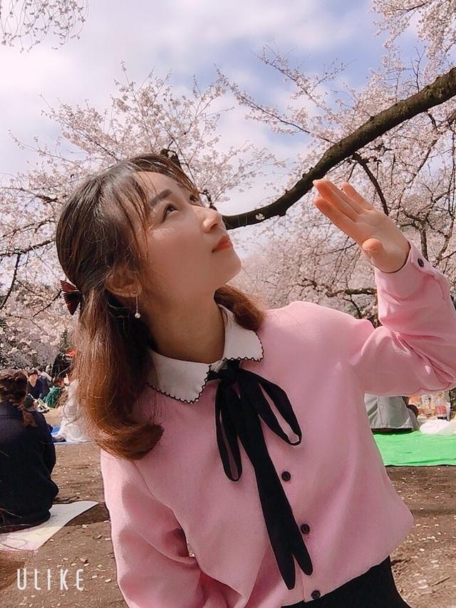 Ngắm hoa anh đào nở - Ngẫm về sự thanh cao, khiêm nhường của người Nhật - 6