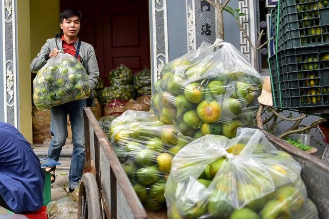 Dân Thủ đô giải cứu quýt sạch cho nông dân Nghệ An - 7