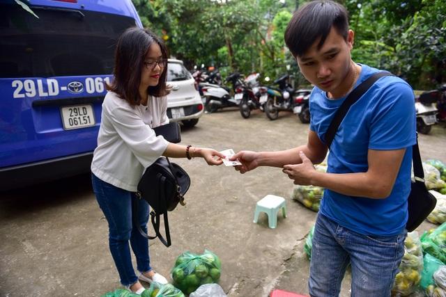 Dân Thủ đô giải cứu quýt sạch cho nông dân Nghệ An - 13