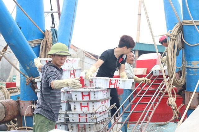 Ngư dân Nghệ An kể chuyện đời đi biển - 2