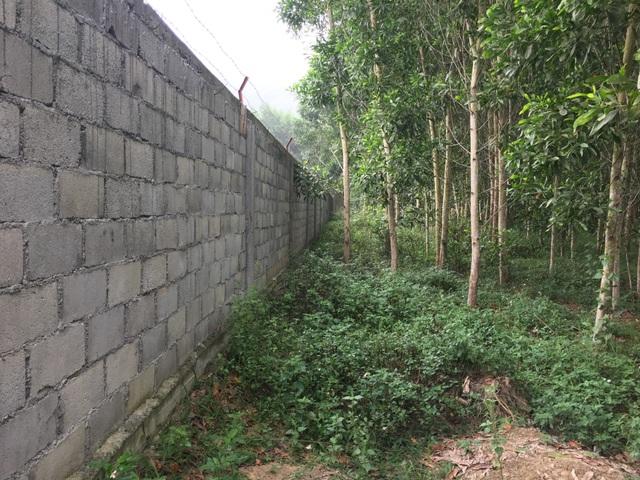 Nghệ An: Trang trại lợn công nghệ cao bức tử môi trường, dân yêu cầu dừng hoạt động - 1